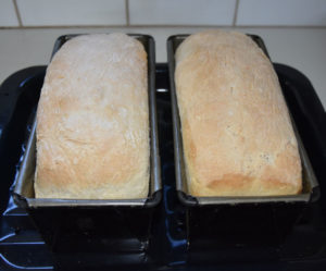 Taking baked bread from the oven